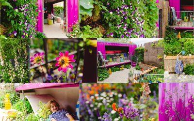 Montessori UK Centenary Garden at RHS Chelsea